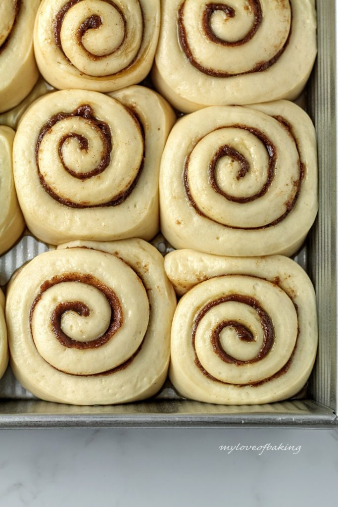 proofed rolls
